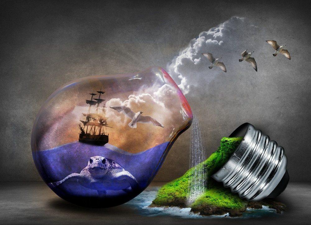 environmental protection, environment, nature-544198.jpg